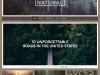 natural-lite-wordpress-theme